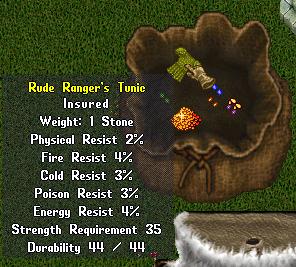 Rude Ranger's Tunic